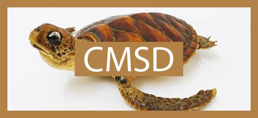 Chinese Medicine Specimen Database